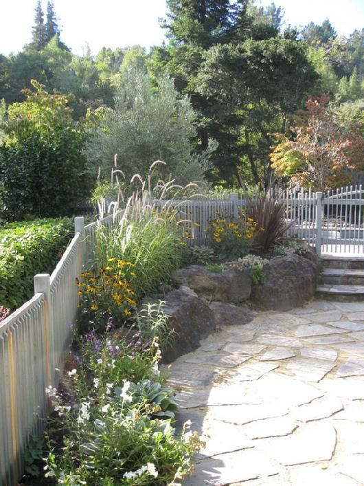 Landscape Garden Design In Kentfield Ca Replaced Patchy Lawn With Eco Friendly Materials And Plantings Mediterranean Plants Landscape Design Garden Design