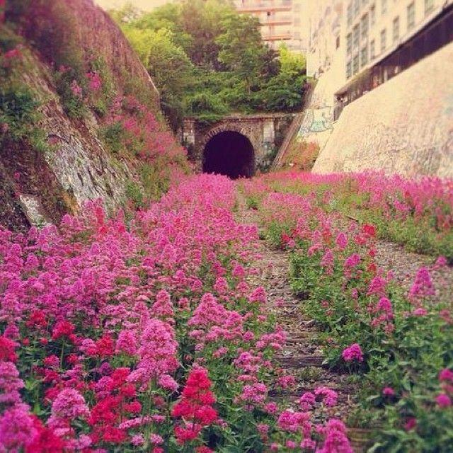 """The Paris Inner City ""Little Belt"", Railway. Abandoned since 1934."""