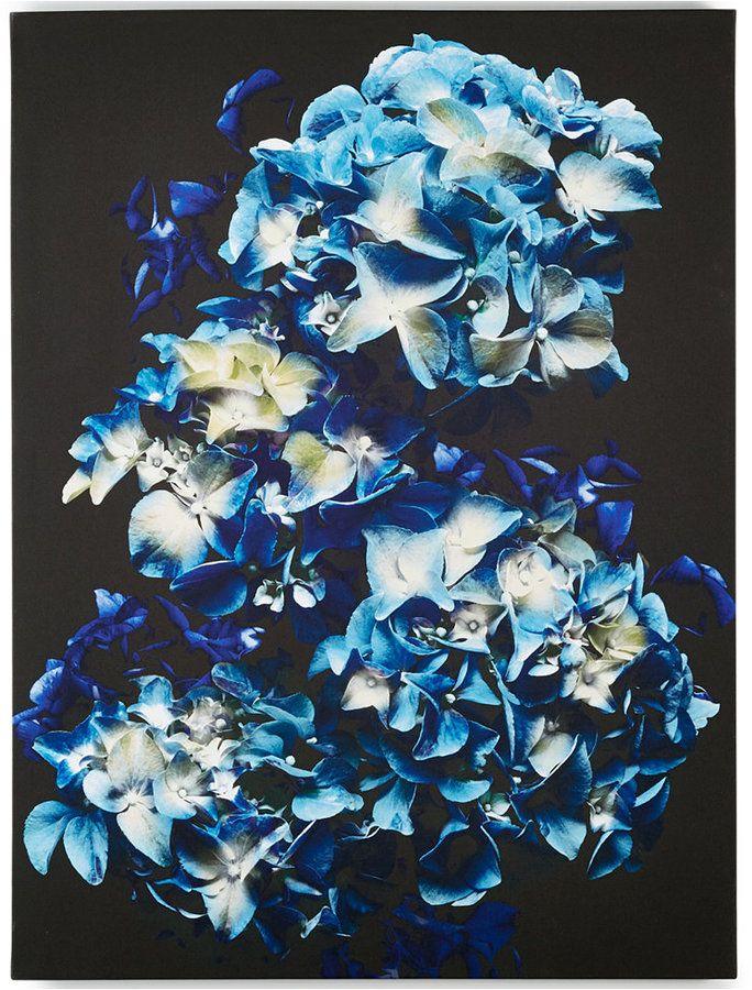 Graham and Brown Blooms in Blue Wall Art