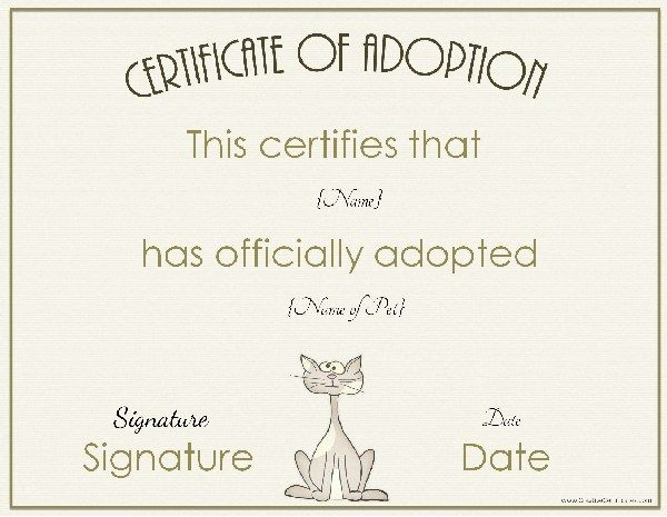 certificate-of-adoption-5jpg (600×465) Festivities Pinterest - fresh cat birth certificate free printable