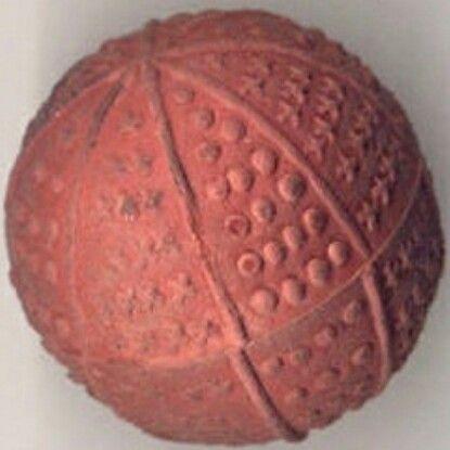 Pequeña pelota de goma