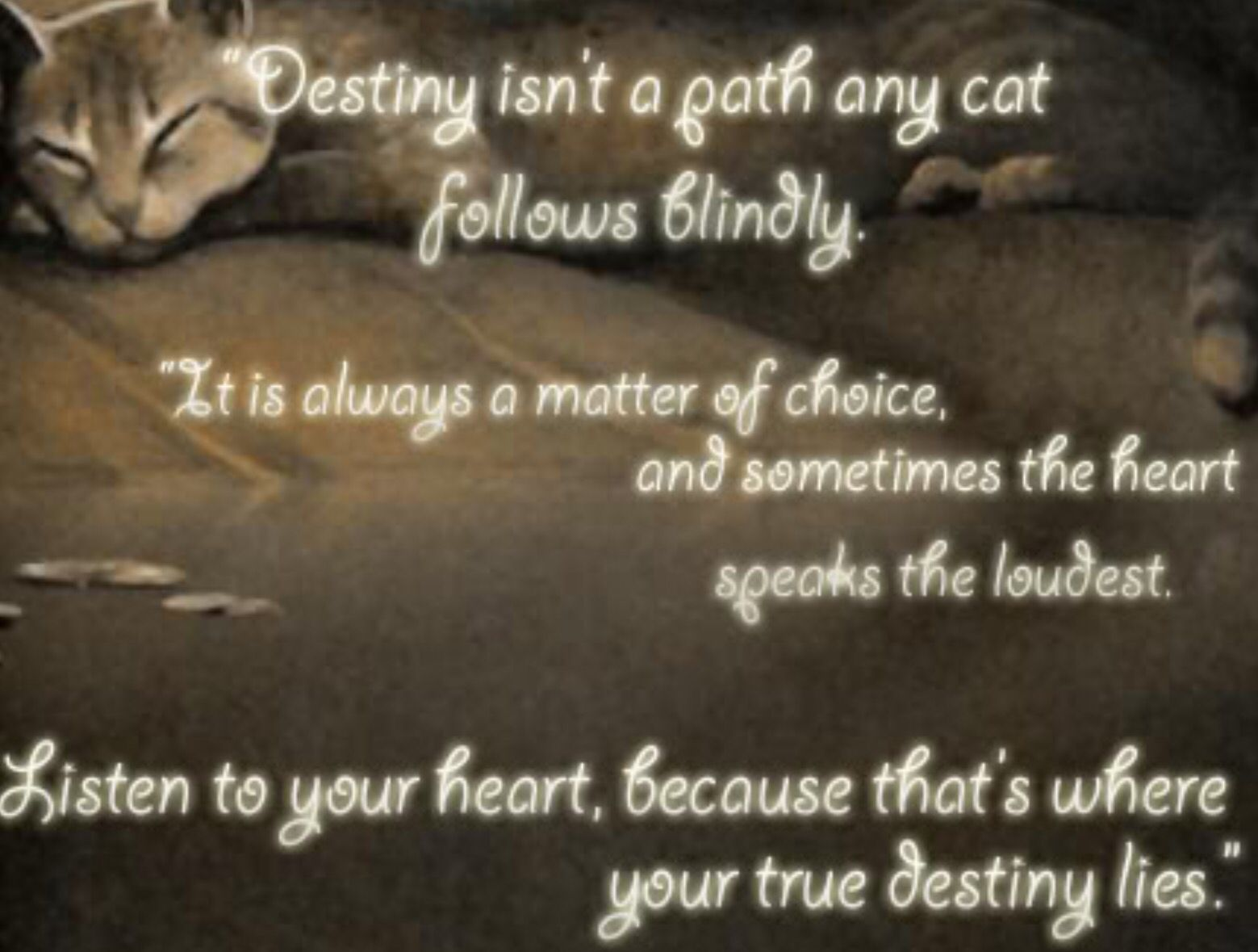 Heart Of A Warrior Quotes: I Could See Yellowfang Saying This To Someone.