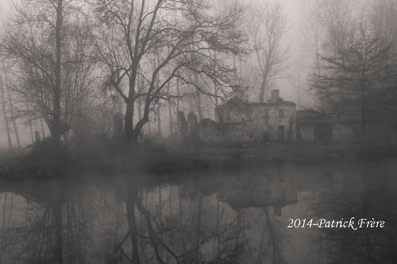Brume sur le Marais Poitevin
