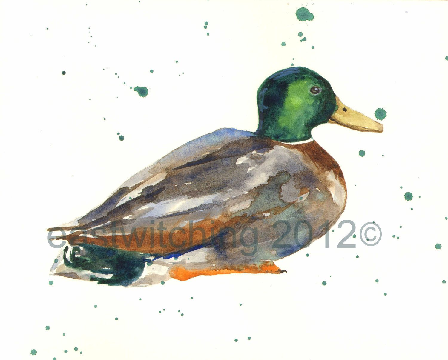 duck art mallard original watercolor painting 8x10 inches