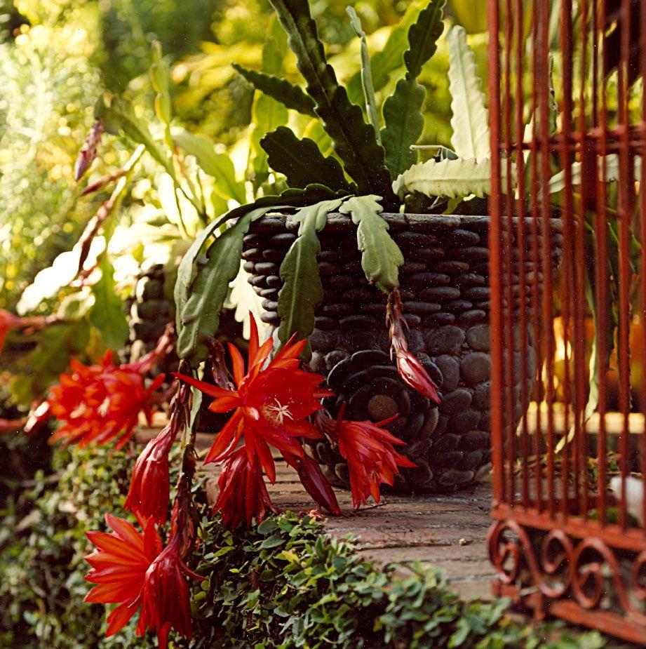 Art Luna Garden Projects Gallery 1 Landscape Design Garden Projects Design Art