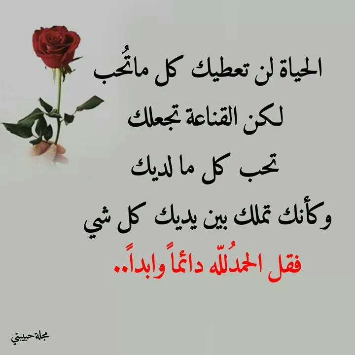 الحياة لن تعطيك كل ما تحب لكن القناعة تجعلك تحب كل ما لديك وكأنك تملك بين يديك كل شئ فقل الحمد لله دائما وأبدا Arabic Lessons Words Feelings