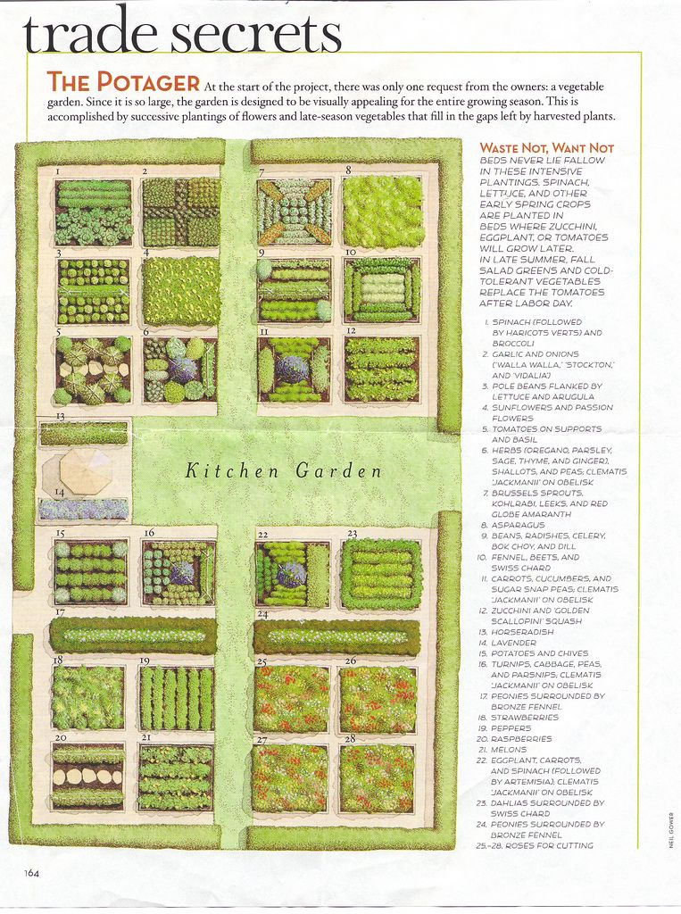 Vegetable And Herb Garden Layout | KITCHEN GARDEN DESIGNS - KITCHEN on raised garden bed plans, classic garden plans, butterfly garden plans, woodland garden plans, annual garden plans, small garden plans, raised garden layout plans, round garden plans, gothic garden plans, window garden plans, rectangle garden plans, build garden cart plans, deer resistant garden plans, flower garden plans, survival garden plans, chinese garden plans, sensory garden plans, front garden plans, kitchen garden plans, straw bale garden plans,