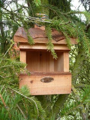Les nichoirs de mon jardin nichoir rouge gorge ces for Nichoir a rouge gorge