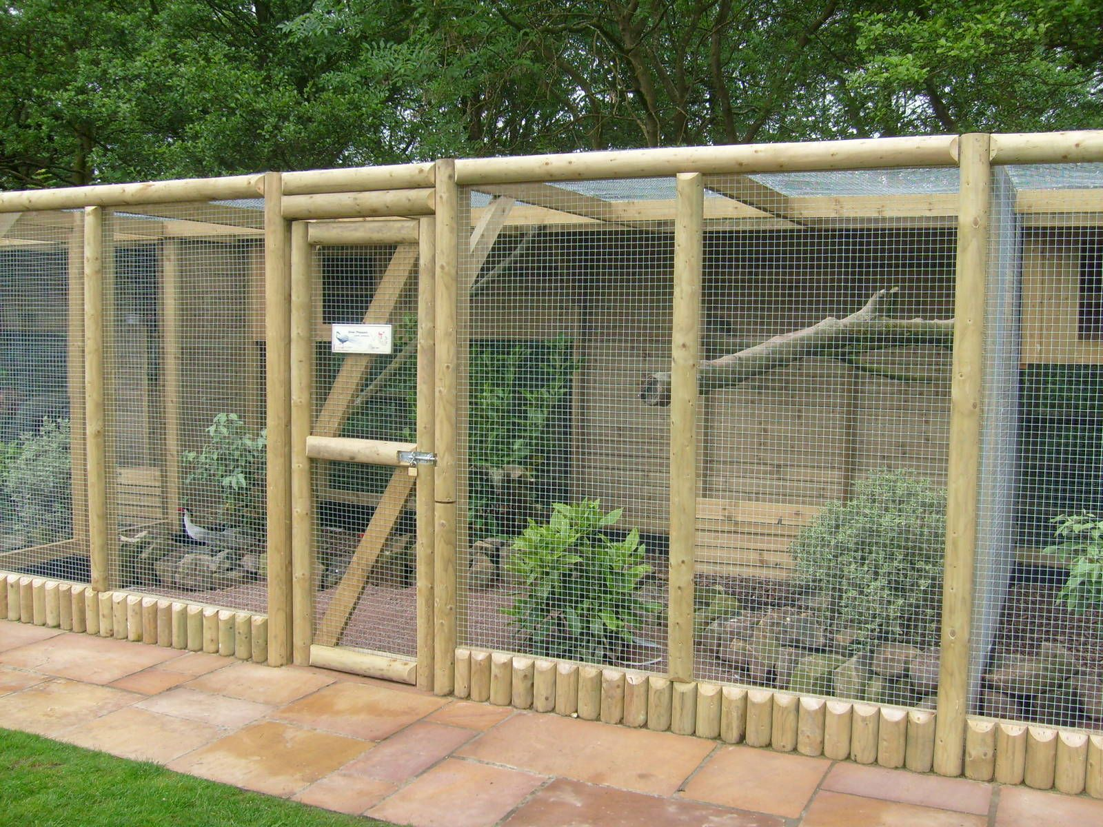 Pheasant enclosures google search chicken coops for Chicken enclosure ideas