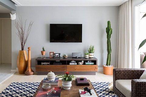 Tipos de plantas para decorar interiores dream home for Tipos de plantas para decorar interiores