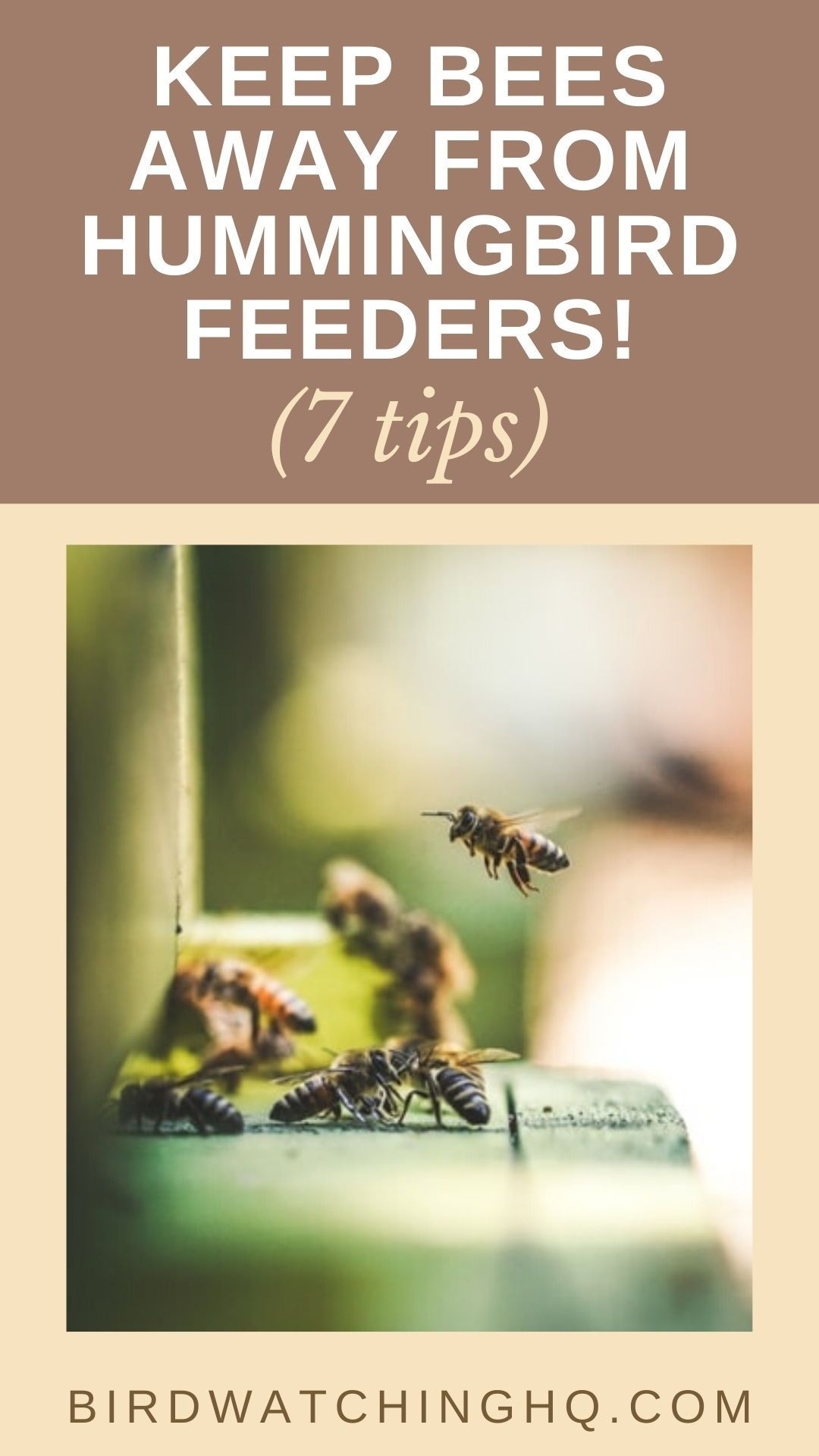 how do you keep bees away from your hummingbird feeders