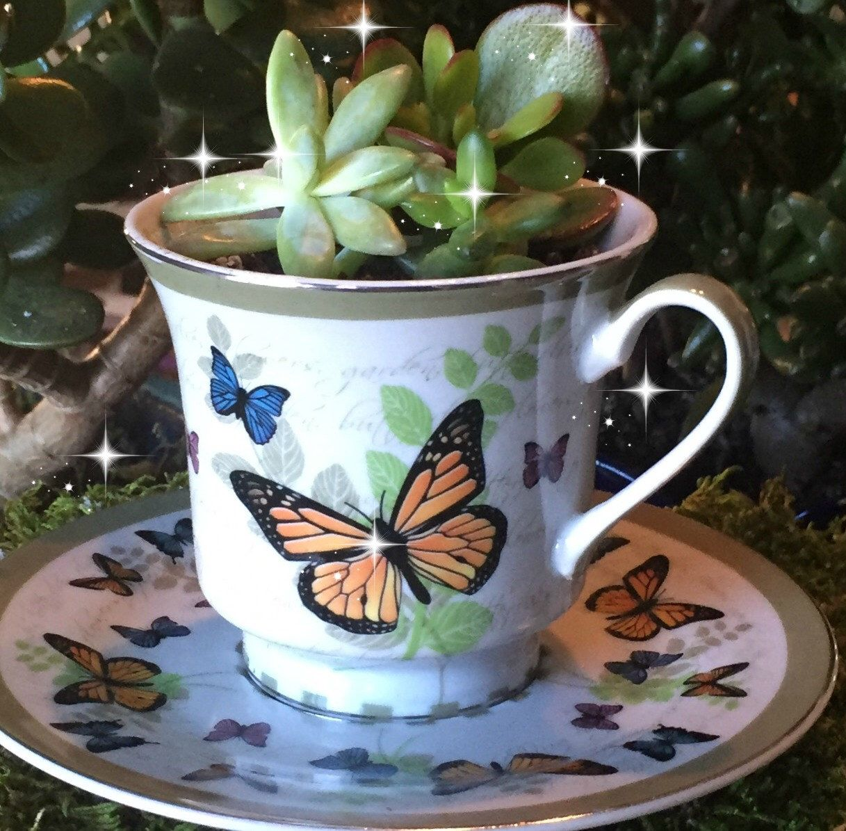 A personal favorite from my Etsy shop https://www.etsy.com/listing/261211418/fairy-garden-teacup-garden-butterfly
