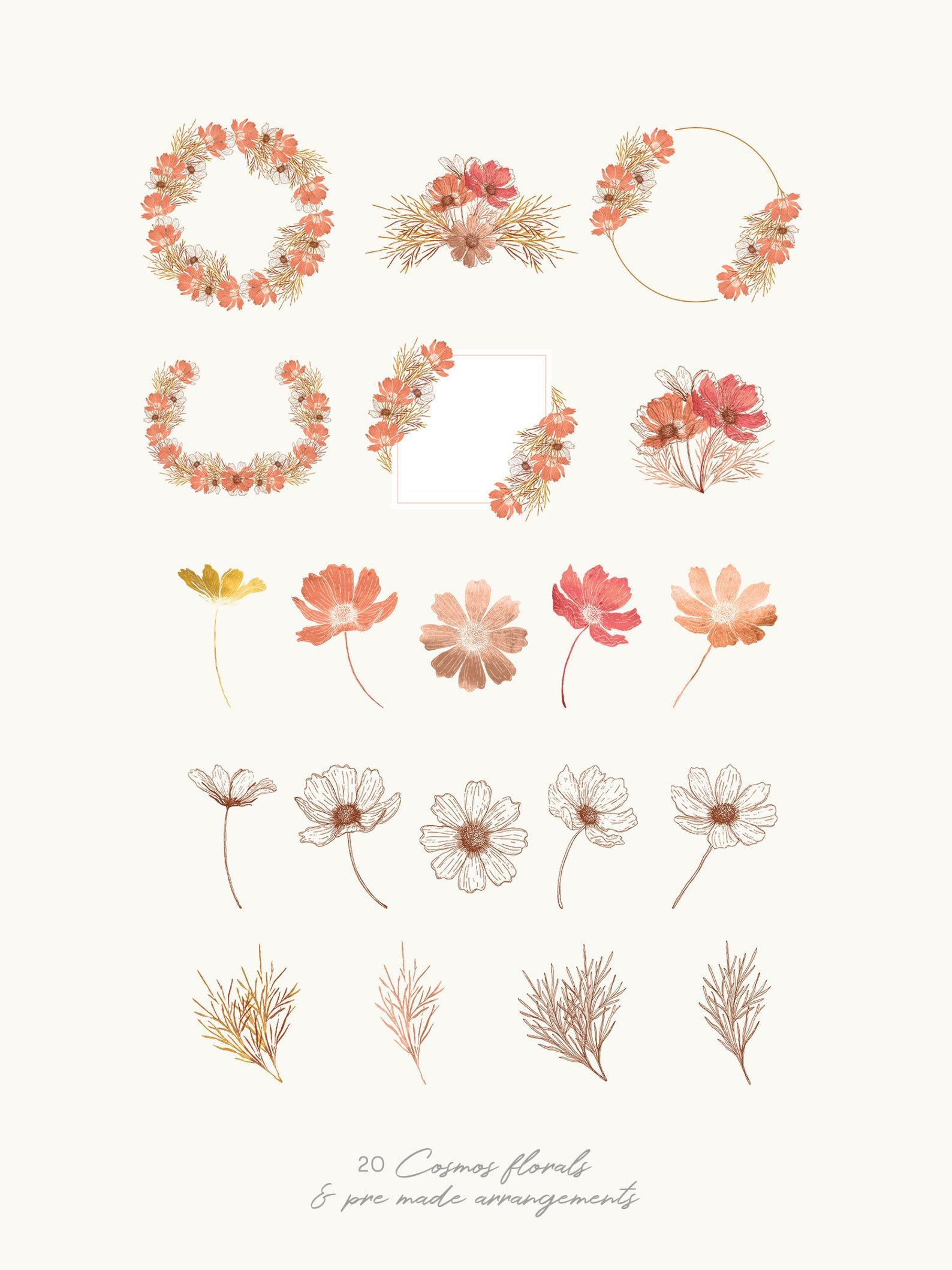 Cosmos Flowers clipart burnt orange watercolor illustration & | Etsy
