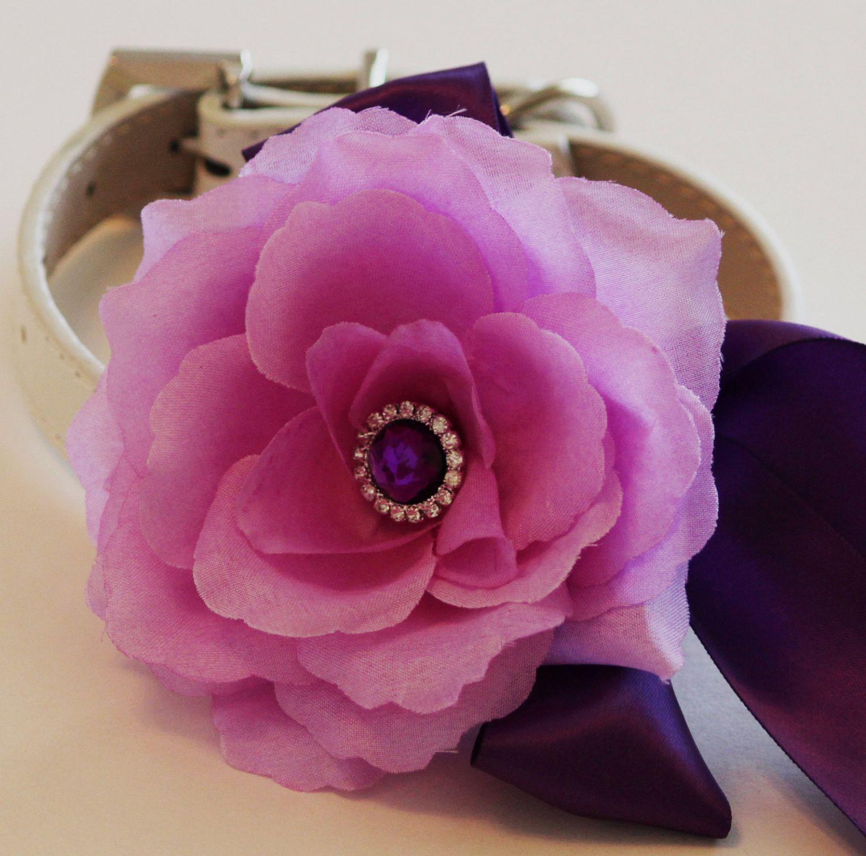 Lavender Purple wedding dog collar, Floral dog Collar- Lavender Purple flower and Rhinestone, Pet Wedding accessory