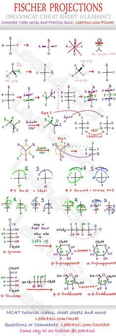 Fischer Projections Cheat Sheet Study Guide - draw and recognize - molecular geometry chart