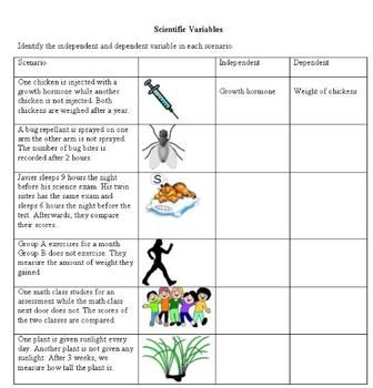 Scientific Variables Science Skills Science Worksheets Science