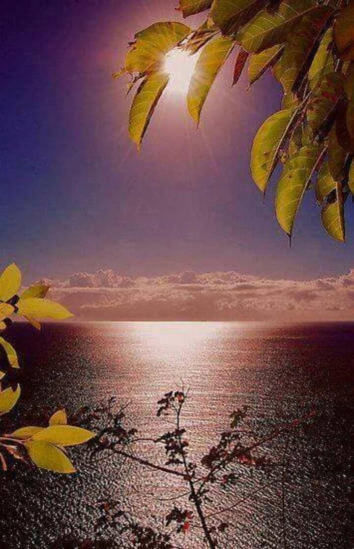 اجمل الصور عن شروق الشمس Google Search Beautiful Nature Nature Sunrise