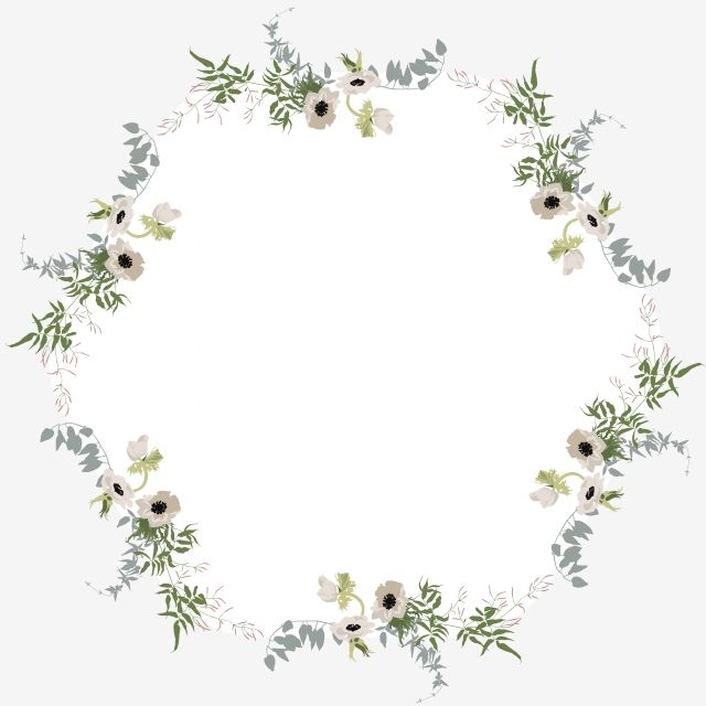 Hexagon Cartoon Floral Border White Floral Border Flower Floral Border Plant Floral Border Floral Border Hexagon Png And Vector With Transparent Background F Floral Border Flower Border Small White Flowers