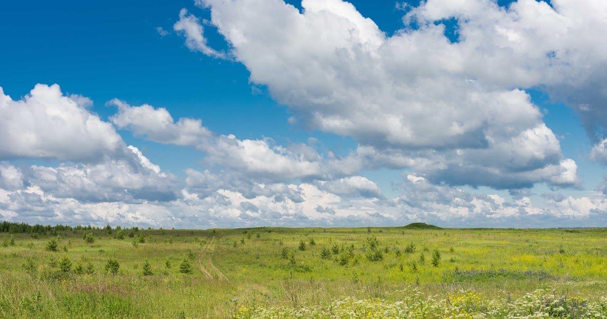 12 Foto Pemandangan Padang Rumput Pemandangan Bidang Padang Rumput Bukit Lembah Pegunungan Pertanian Nasi Polos Thailand Lapanga Di 2020 Pemandangan Rumput Ekosistem