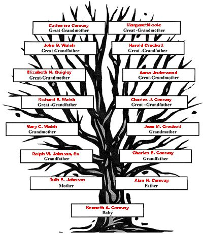 how to draw family tree chart