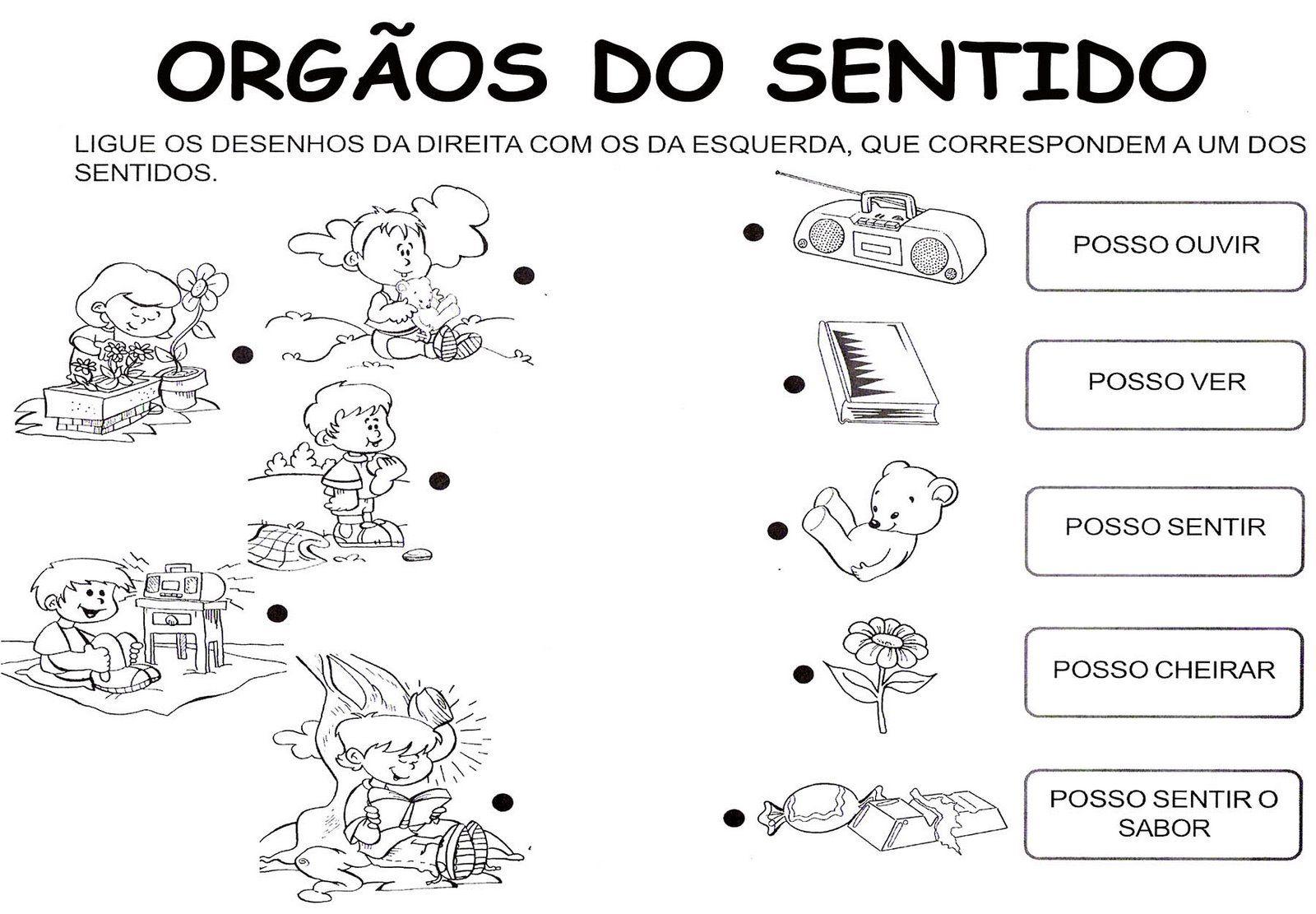 Educare Atividades Dos 5 Sentidos With Images