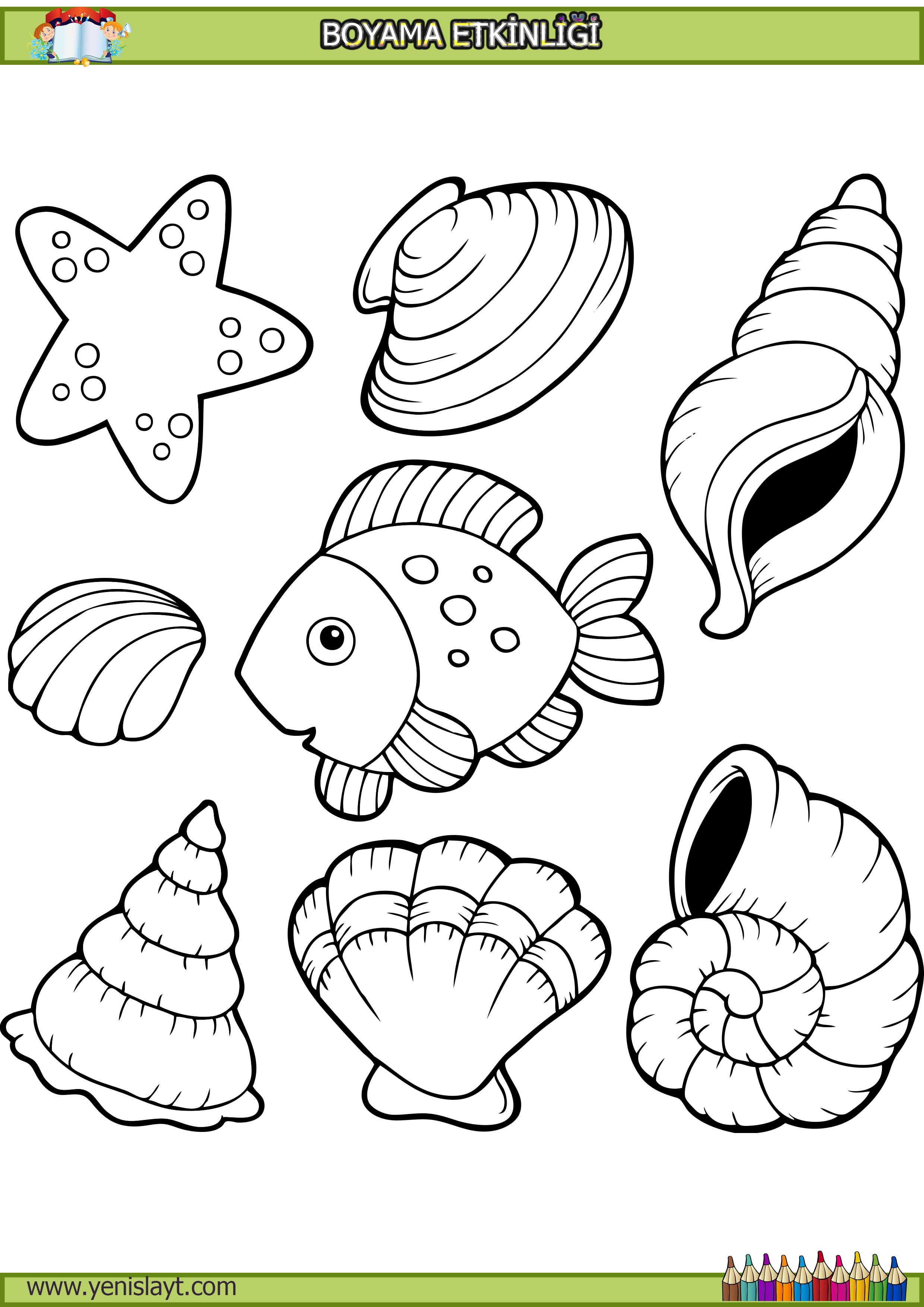 Balik Deniz Yildizi Boyama Okul Oncesi Ile Ilgili Gorsel Sonucu Tekne Cizim Desenler Sanat