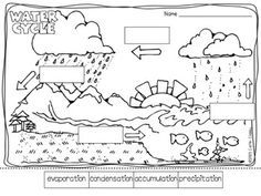 labeling the water cycle worksheet - WOW.com - Image Results ...