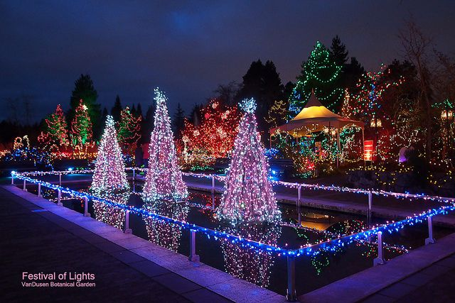 Festival Of Lights At Vandusen Garden Vancouver Blog Miss604 Festival Lights Christmas Lights Christmas Light Displays