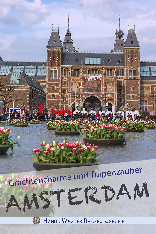 e375e75ac3de76 In 1001 Variation präsentiert sich die Tulpe