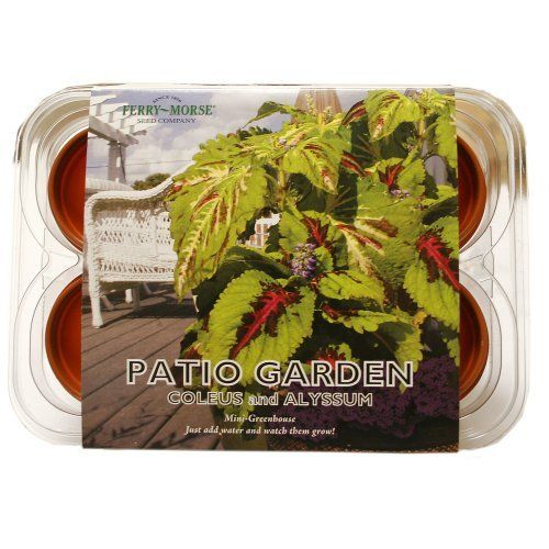 Ferry Morse 835 Patio Flower Mini Greenhouse U0026 Seed Kit By Ferry Morse.  $8.48. 6 Cell Indoor Mini Greenhouse Garden With Plants U0026 Seed. Patio  Flower Garden.