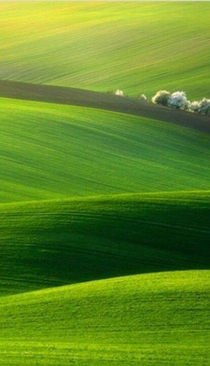 Green Meadows Landscape Photography Green Nature Landscape