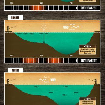 Das Jahr der Forellen | Forellen angeln, Fische angeln