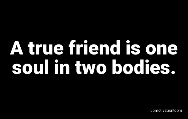 A true friend is one soul in