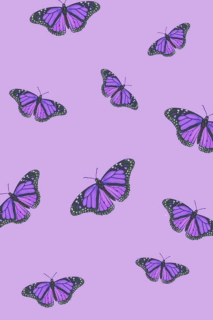 Purple Aesthetic Purple Butterfly Wallpaper Purple Aesthetic Background Purple Wallpaper Iphone