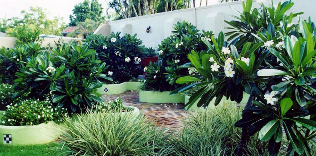 Tropical Garden Design Backyard Landscaping Designs Garden Structures