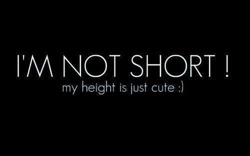 Afbeeldingsresultaat voor short girl quote   Qoutes   Short funny