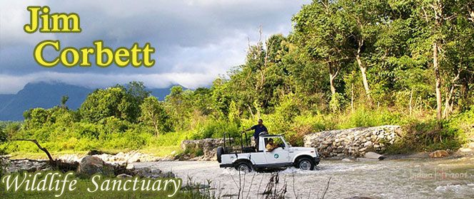 #CorbettPackages-Best offers on Corbett Tours & travel packages at Indiaholidaypackages.com Fill the query form  OR SMS/Whats App Flexi- Domestic on +91-9811251108 OR Call +91-11-4652-4652