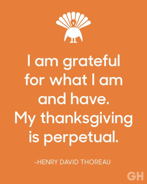 22 Best Thanksgiving Quotes To Share At Your Table Thanksgiving