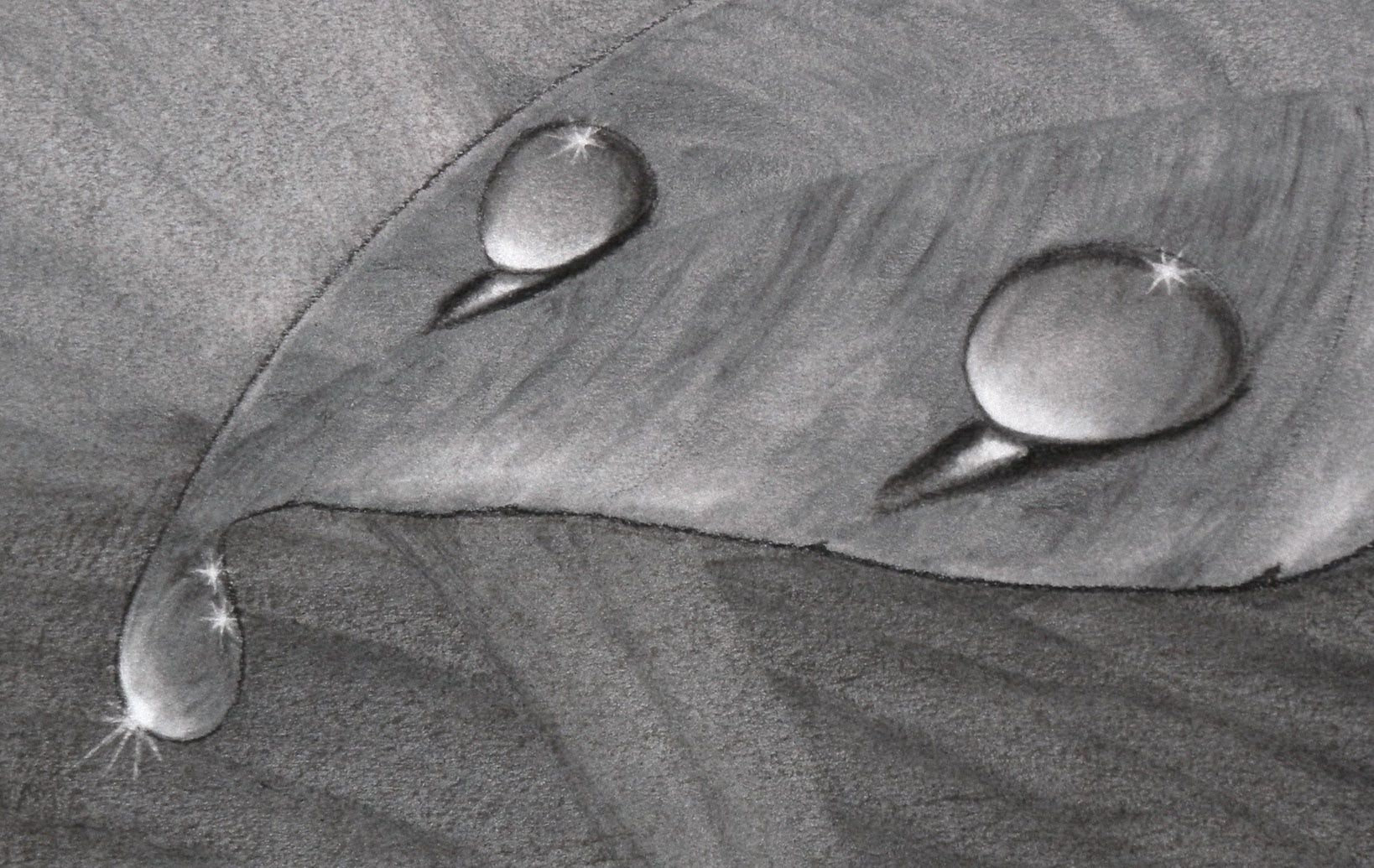 How to draw water drops with charcoal also has interesting tips on accurately observing water drops