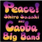Peace [CD]