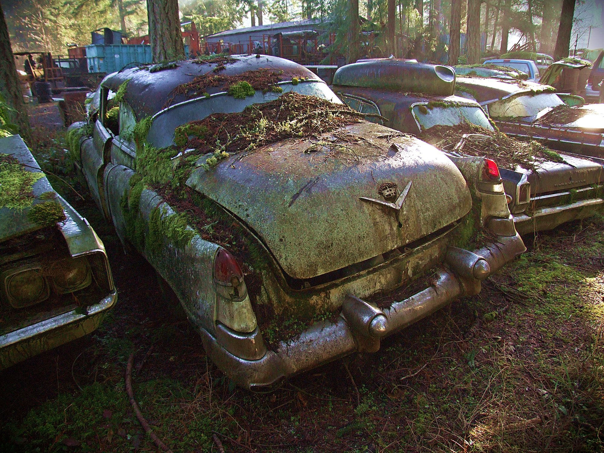 Find Cars From The Hemmings Nation Flickr Pool Trust Salvage Auburn Washington