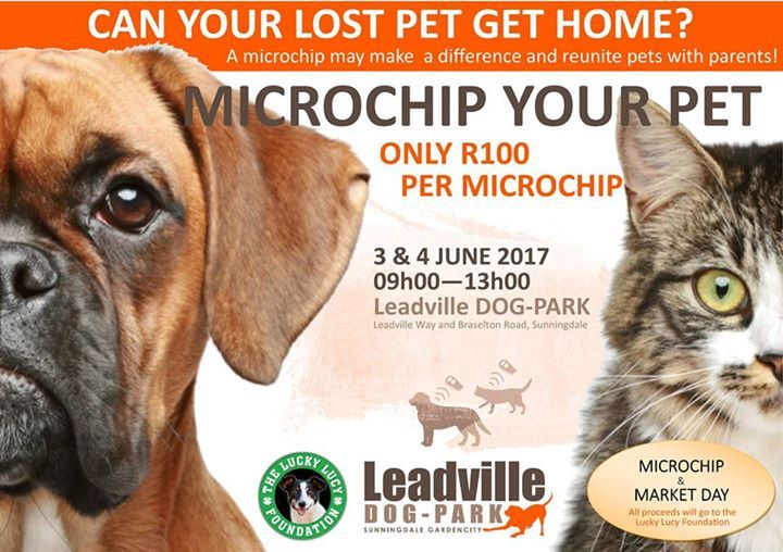 Don T Forget The Lucky Lucy Microchip Day Coming Soon To Leadville Pets Dogs Cats Birds Rabbits Lovablepets Losing A Pet Dogs Your Pet