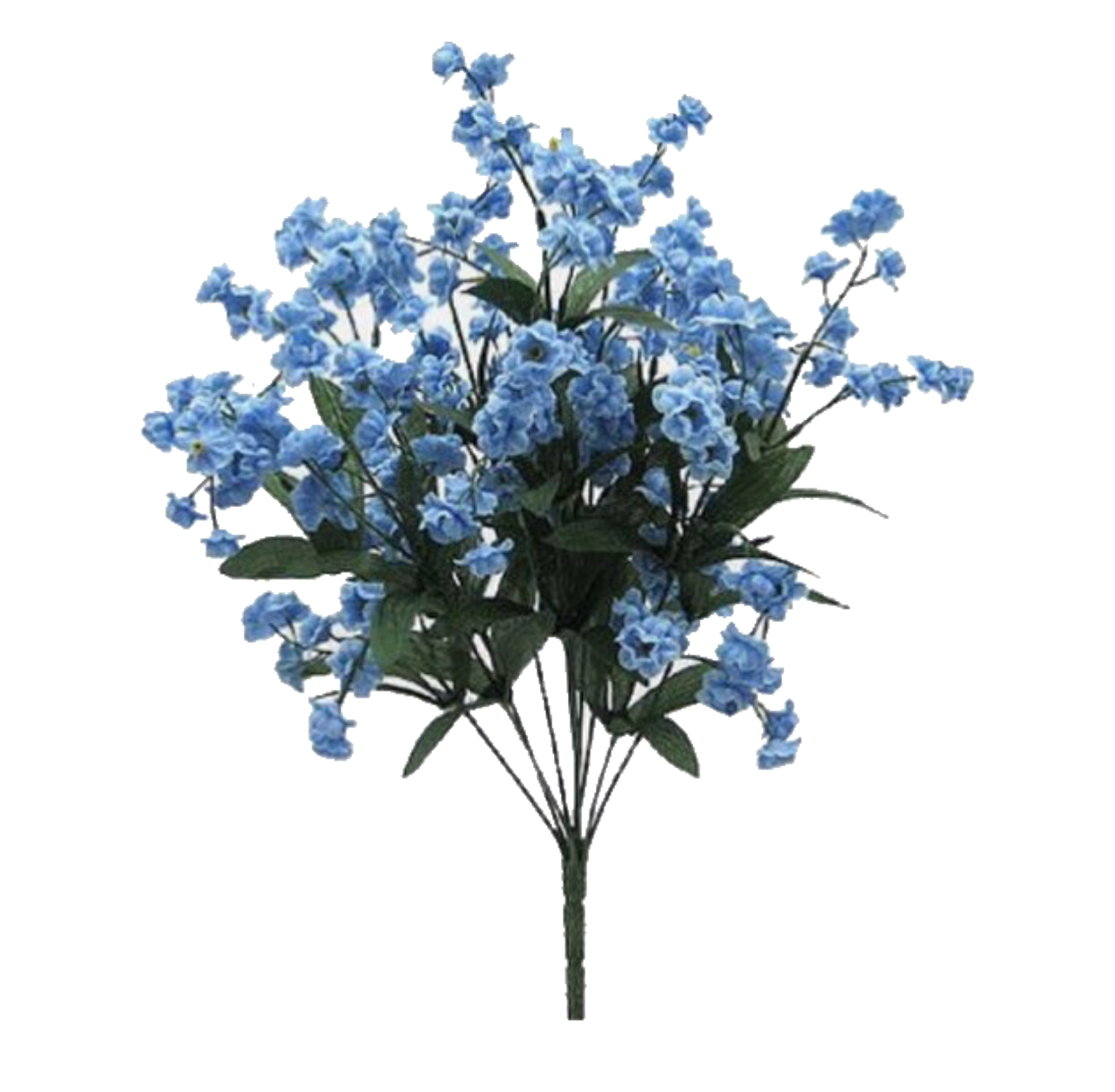 Pin by annika esselstrom on pngs Flowers, Blue aesthetic