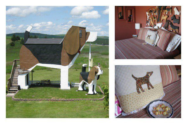 Looking to get away? Forget B&Bs – the new weekend getaway is the D&B! The Dog Bark Park Inn is the Bed & Breakfast hot spot for hip pooches.