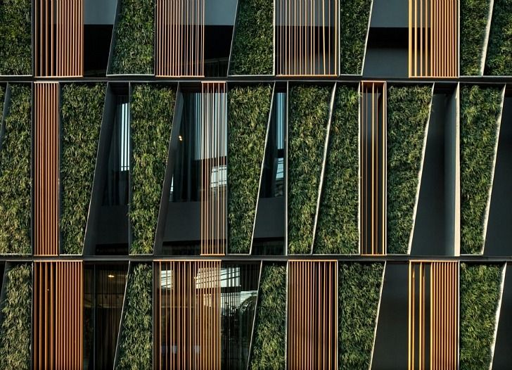 greenery  louvers