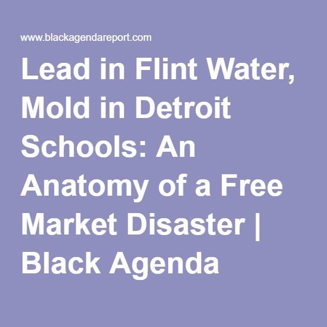 Lead in Flint Water, Mold in Detroit Schools: An Anatomy of a Free Market Disaster | Black Agenda Report