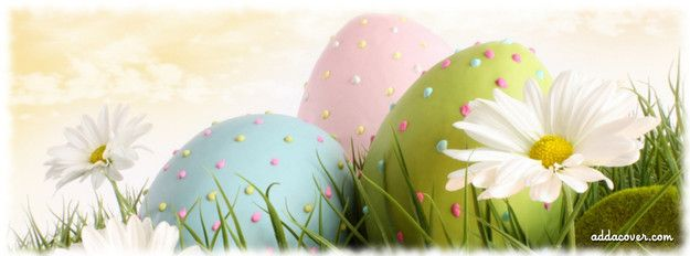 easter eggs facebook cover fb covers pinterest