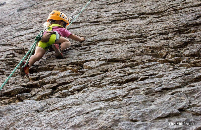Klettergurt Edelrid Fraggle : Edelrid kids fraggle climbing harness climb pinterest