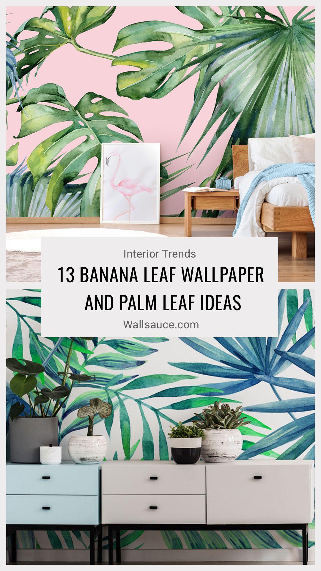 13 Banana Leaf Wallpaper and Palm Leaf Ideas Banana leaf
