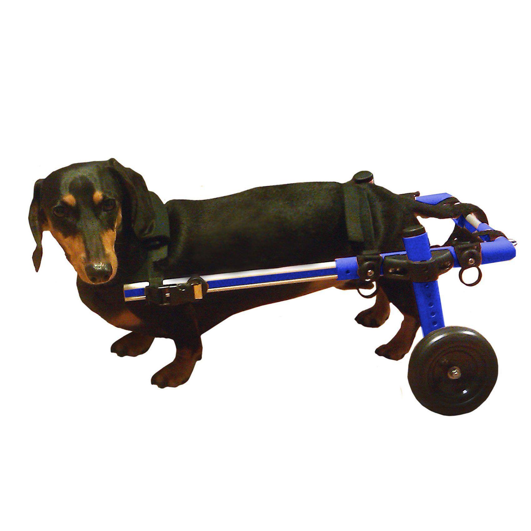 Walkin' Wheels Dog Wheelchair Small Blue Dog wheelchair